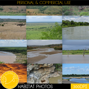 Wild Life Photos of Different Habitats for Commercial Use