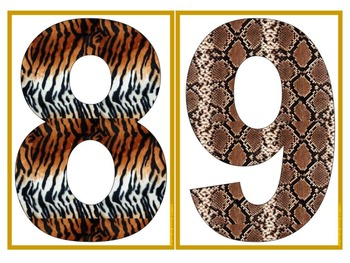 Wild Numerals and Symbols