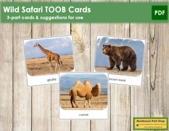 Wild Safari Toob Cards - Montessori
