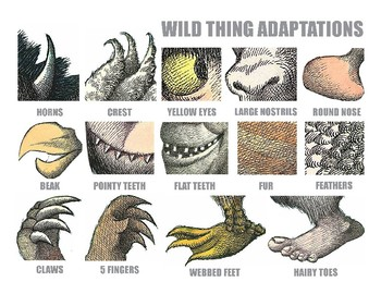 Wild Thing Adaptations Project