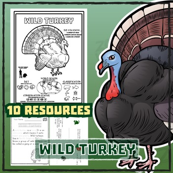 Wild Turkey -- 10 Resources -- Coloring Pages, Reading & A