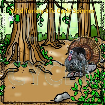 Wild Turkey (Life Cycle Spinner)