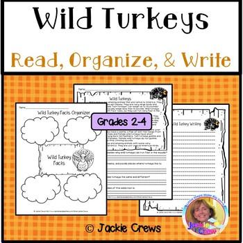Wild Turkey Reading Comprehension w/ Extended Response/Main Idea Freebie