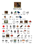 Wild Turkey - picture supported text visual lesson article facts questions