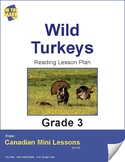 Wild Turkeys Reading Lesson Gr. 3 (following directions)