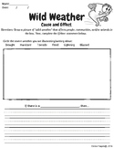 Wild Weather Cause/Effect Worksheet