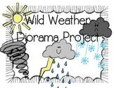 Wild Weather Diorama Project