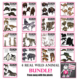 Wild and Farm Realistic Animal Clip Art Mega Bundle - Save $$$$!