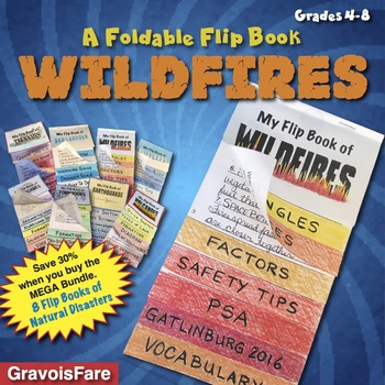 Wildfires: A Foldable Flip Book of Natural Disasters