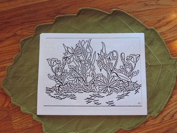 Wildflower Coloring sheet