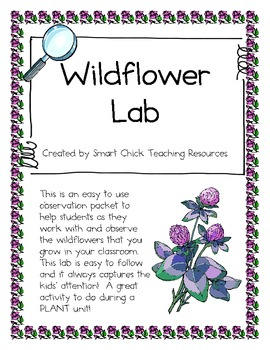 Wildflower Growth and Observation Lab ~ Great for a Plant Unit!