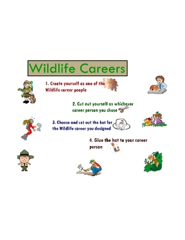 Wildlife Careers - Animal/Plant - Character Activity