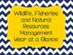 Wildlife, Fisheries & Ecology Management