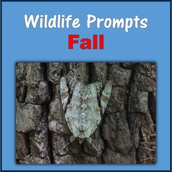 Wildlife Prompts (Fall)