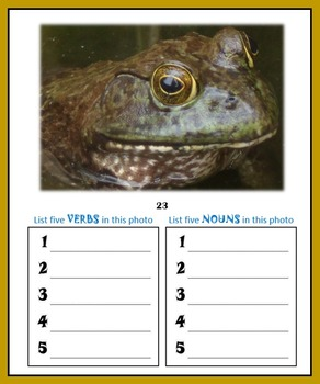 Wildlife Writing Prompts:  50 pages of butterflies, birds, bees and more…