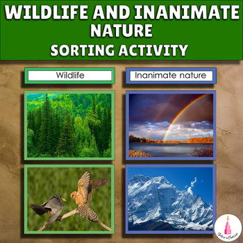 Wildlife and Inanimate Nature Sorting Cards