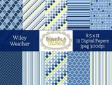 Wiley Weather: 12 Digital Papers for Commercial Use