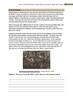 Wilfred Owen-War Poems & Others Teacher Text Guides & Worksheets
