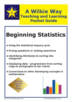 Wilkie Way Pocket Guide To Beginning Statistics