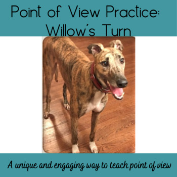 Willow's Point of View Writing Activity
