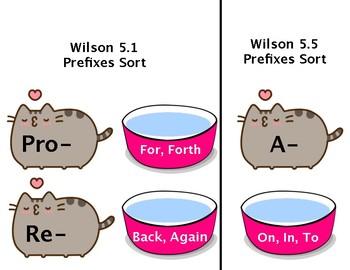 Wilson Step 5 Prefixes Sort