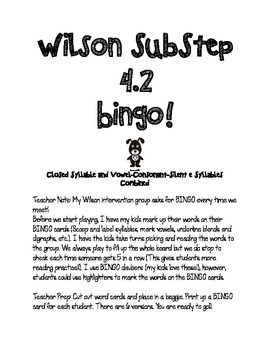 SubStep 4.2 Bingo! Closed Syllable & VCe Syllables Combined