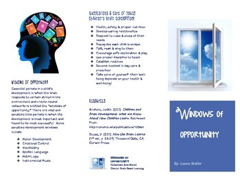 Windows of Opportunity Brochure