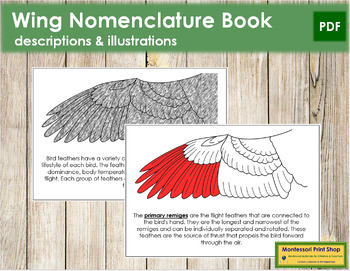 Wing Nomenclature Book (Red)