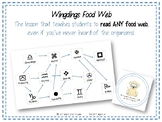 Wingdings Food Web - Lesson Activity