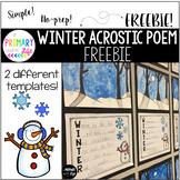 Winter Acrostic Poem Template - FREEBIE!