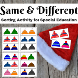 Winter Activity Same and Different Sorting