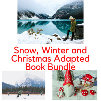 Winter Adapted Book Bundle