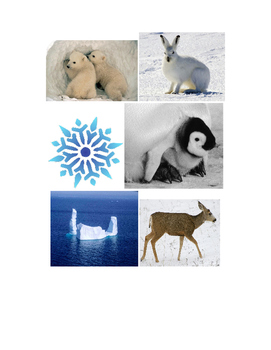 Winter Animal Bingo