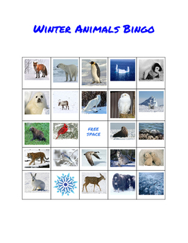 Winter Animal Bingo