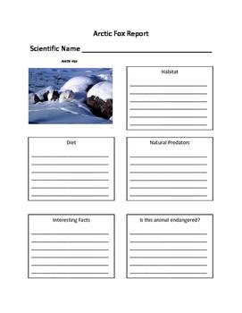 Winter Animal Report Packet- Polar Bear, Penguin, Seal, Reindeer, Arctic Fox
