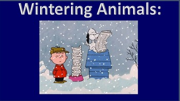 Winter Animals (ANIMATED)
