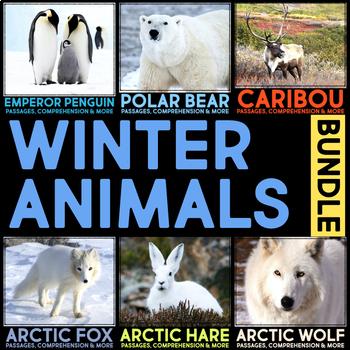 Winter Animals Articles, Website Research & Comprehension Activities BUNDLE