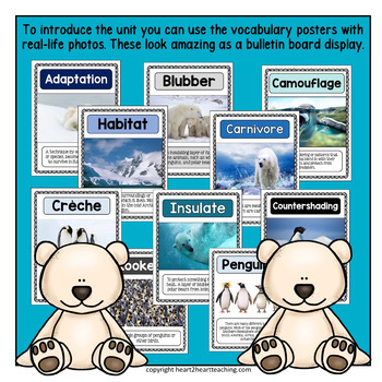 Winter Animals Bundle: Penguins and Polar Bears - 2 COOL Units in one!