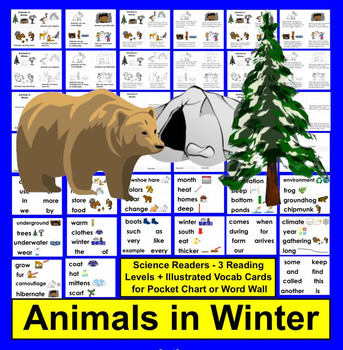Animals in Winter Readers - Hibernation, Migration, and Adaptation: 3 Levels
