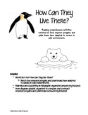 Winter Animals Reading Comprehension