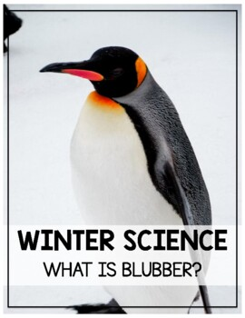 Winter Animals: What is it like to have blubber? Activity