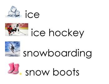 Winter Around the World Vocabulary Word Cards