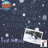 Winter BOOM Cards™ - Vocabulary & 'What' Questions