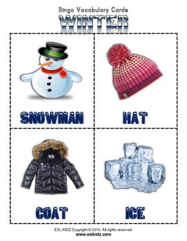 Winter Bingo Game Set with flashcards