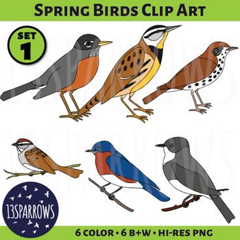 Spring Birds Clip Art, Set 1