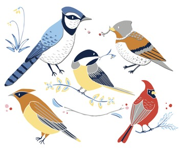 Winter Birds - Winter Clipart - Bird Clip Art - Cardinal Clipart