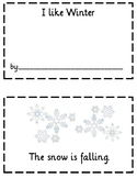 Winter Booklet Using Sight Words