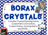 Winter Borax Crystal Project and Guessing Game