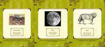 Winter Bundle-Nature Education Unit-Stage 2 (Magic Forest Academy)