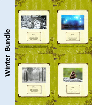 Winter Bundle-Nature Education Unit-Stage 2 (Magic Forest Academy)